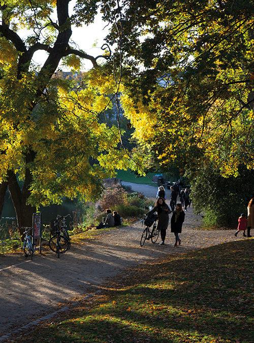 Ørsted Park